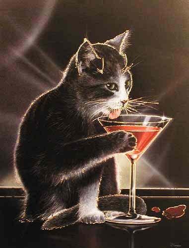 Katze und Sektglas Bild
