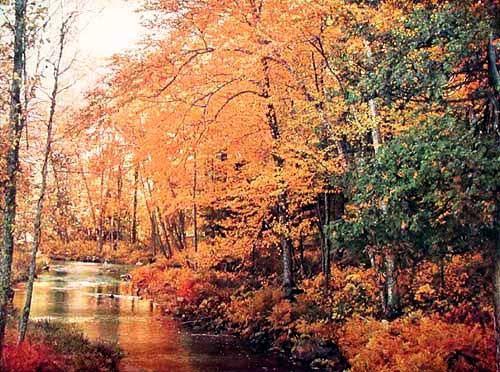 Herbstliche Landschaft mit Fluss Alu Bild