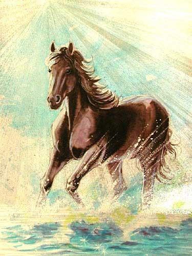 Braunes Pferd im Wasser Alu Bild