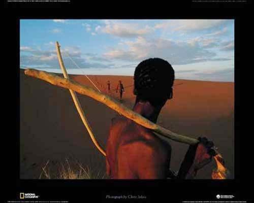 Kalahari Wüste Poster
