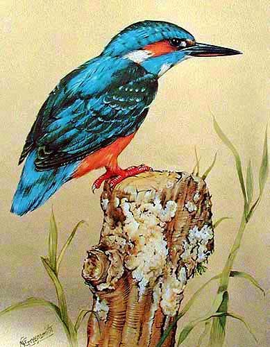 Eisvogel by Greensmith