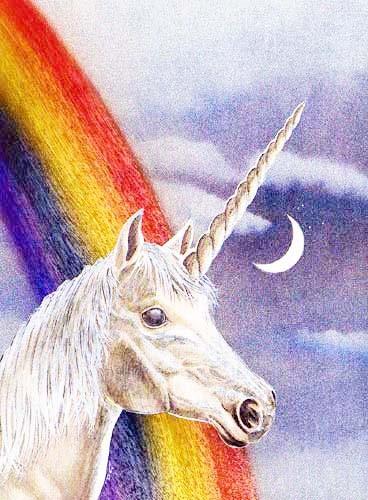 Einhorn und Regenbogen Bild