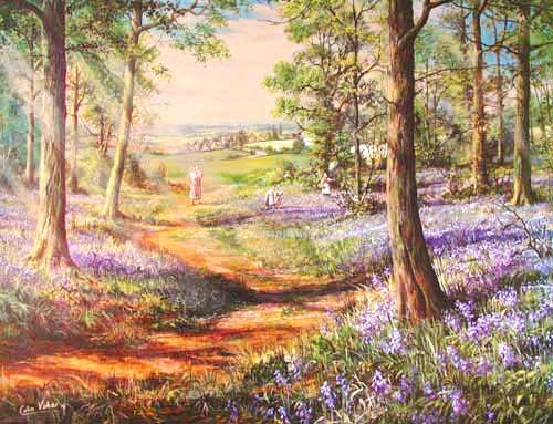 Bluebell Wood by Colin Vokes