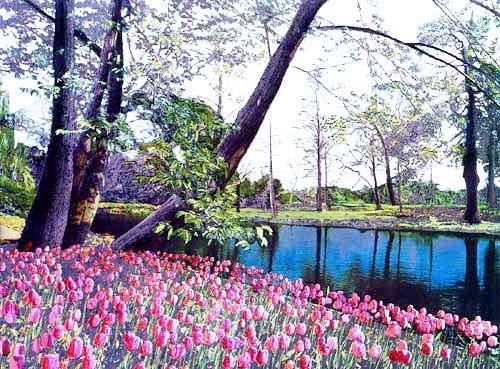 Frühling, Tulpenwiese Alu Bild 16x24 cm