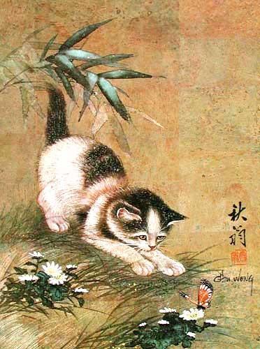 Katze und Schmetterling Alu Druck