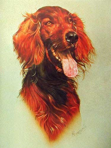 Setter by Greensmith
