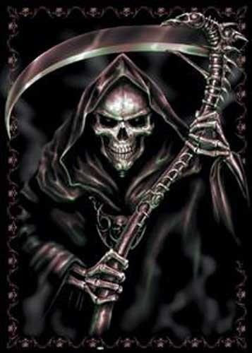 Reaper`s Curse