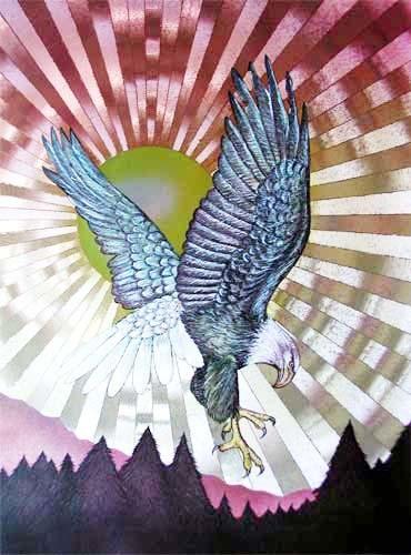 Weißkopfseeadler und Sonne Alu Bild
