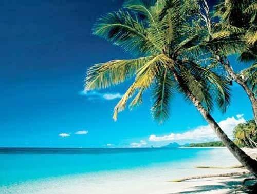 Karibischer Strand, Meer Poster 40x50 cm