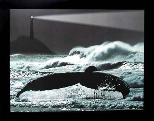 Walfloße und Leuchtturm