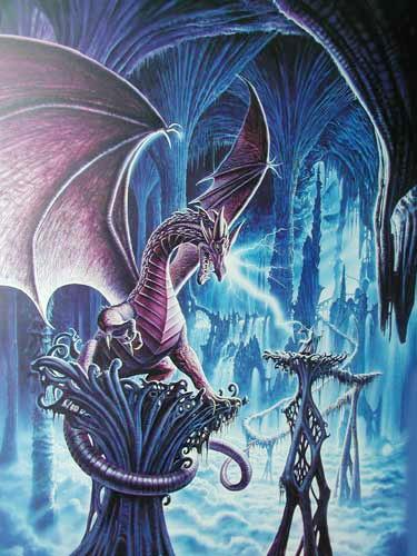 Drache und Zauberer Poster 50x70