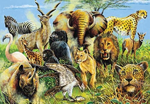 African Animals by Alan Fairbrass