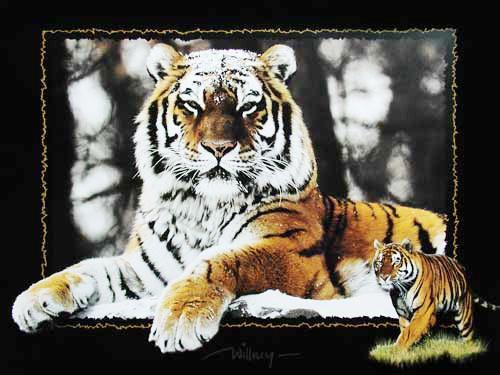 Tiger im Schnee by Willney