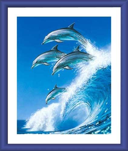 Delphine auf Welle