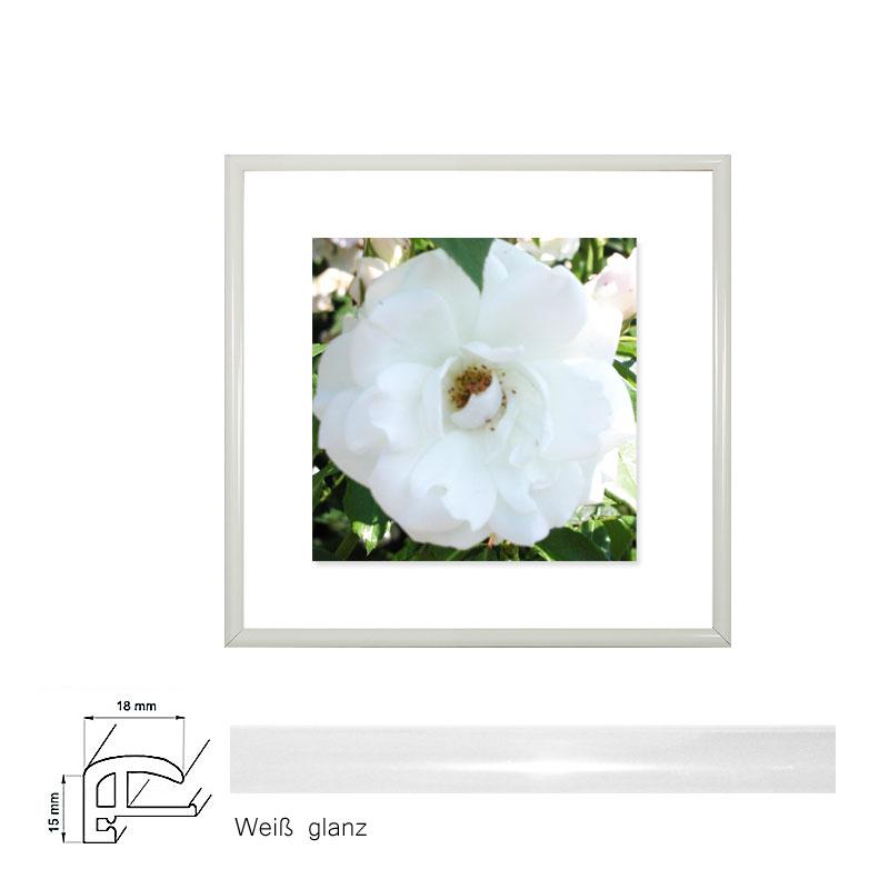 Fotorahmen 20x20 cm, Weiß Glanz; Profil 18 mm kaufen