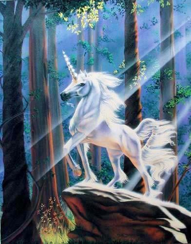 Einhorn - Licht im Wald - Poster