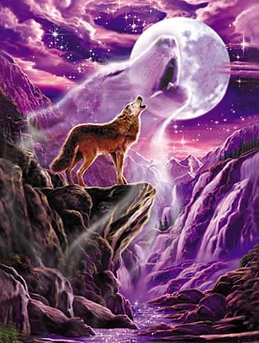 Wolf Spirit by Meiklejohn Graphics