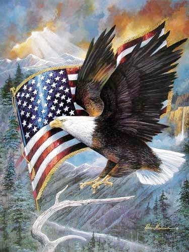 Poster Seeadler und USA Fahne