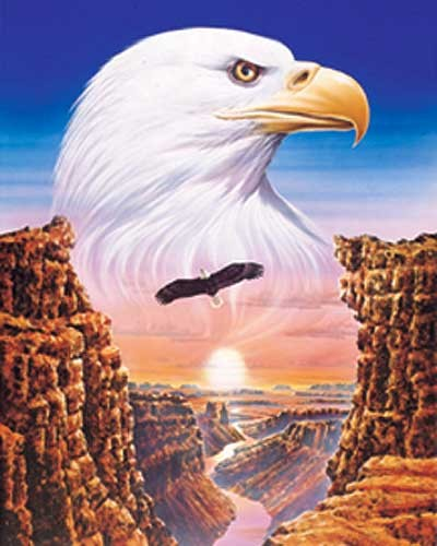 Weißkopfseeadler Fantasy Bild