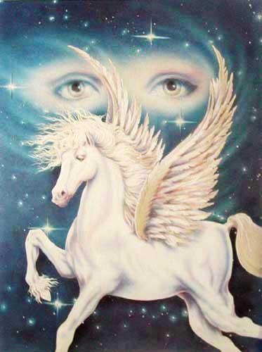 Pegasus by Klaus Holitzka