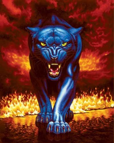 Fire Panther Alu Bild Poster 43x54 cm