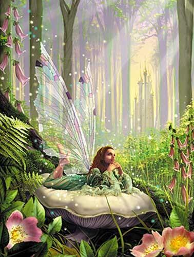 Wood Fairy Alu Bild