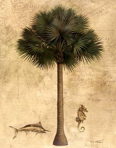 Exotische Palme Kunstdruck 20x25 cm