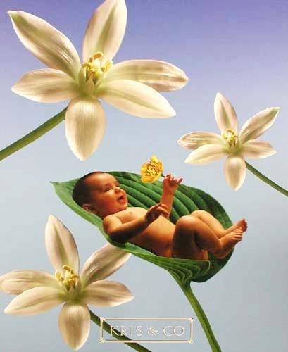 Baby und Blumen Poster