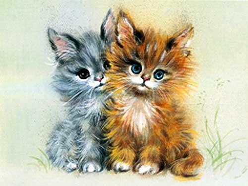 Zwei Babykatzen Alu Bild