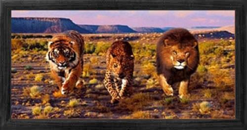 Tiger, Löwe, Leopard