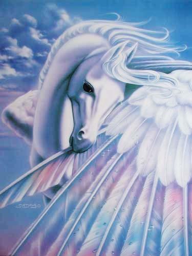 Pegasus by Susan Dawe (laminiert)