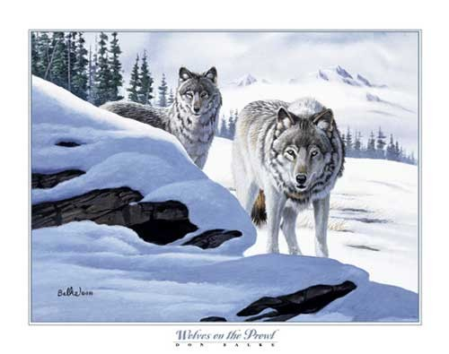 Wölfe, Wolves on the Prowl, Don Balke