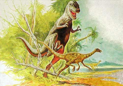 Tyrannosaurus und Ornithomimus Postkarte