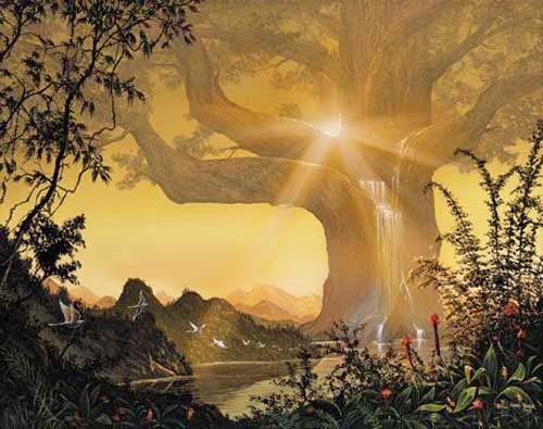 Lebensbaum/ Tree of Life von Georg Huber Poster 40x50