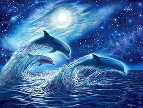 Springende Delfine bei Vollmond Alu Bild