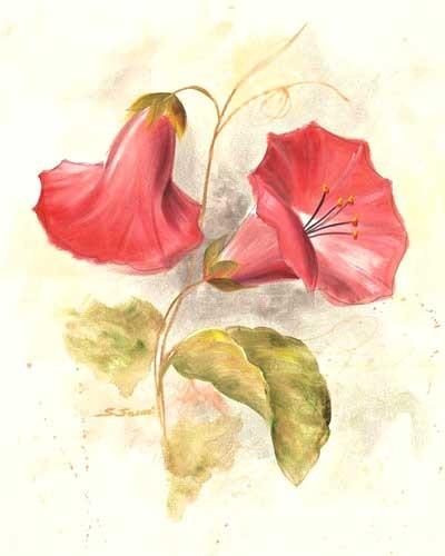 Rote Glöckchen, S. Sausi