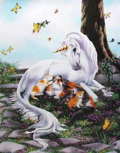 Einhorn und Katzen Alu Bild