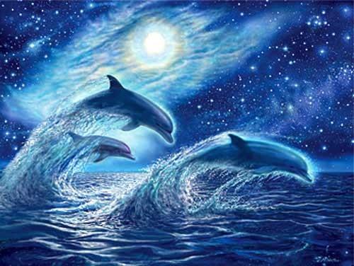 Delphine, Ocean Dreamers