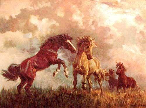 Pferde, Welch Alu Bild
