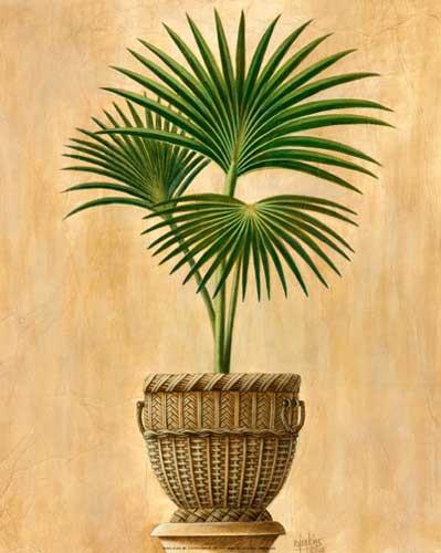 Palme I Kunstdruck 20x25 cm
