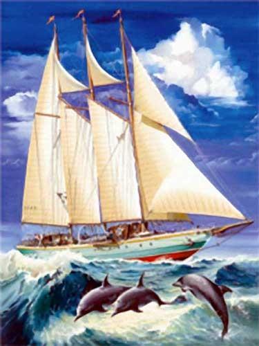 Segelschiff mit Delfinen Alu Druck