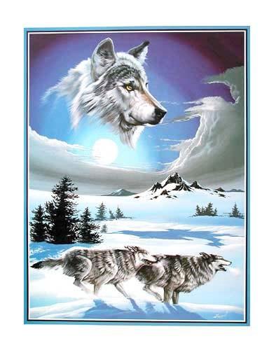 Wölfe im Schnee by Gary Ampel *