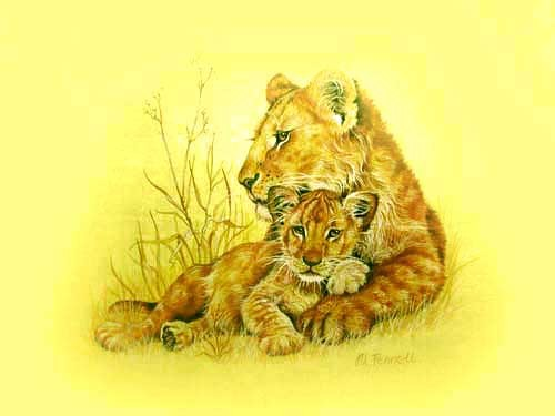 Lion and Cub, gold by M. Fennell