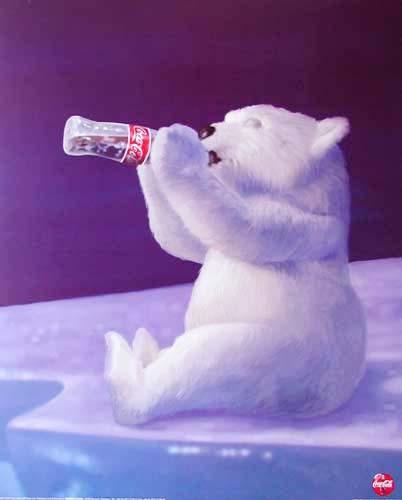 Polar Bear Cub *