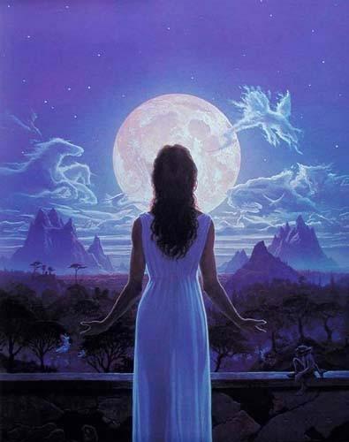 The Moon`s Wife by Mick Van Houten