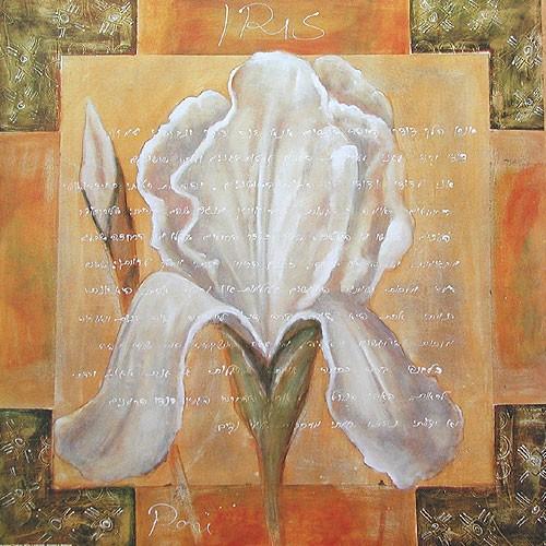 Iris Kunstdruck