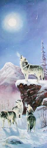 Wolf by M. Caroselli