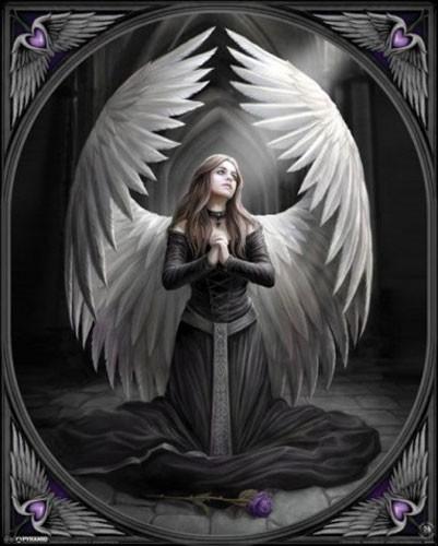 Prayer for the Fallen Poster 40x50 von Anne Stokes