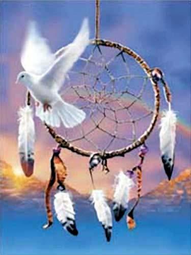 "Dream Catcher ""Dove"" by David Penfound"