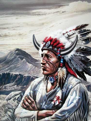 Indianerhäuptling von Gary Ampel - Poster